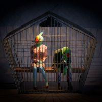 «La conférence des oiseaux» - Angoulême